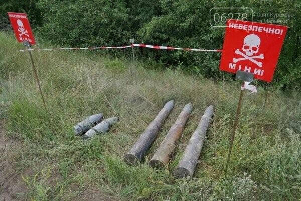 В водоёме Марьинского района обнаружили боеприпасы., фото-1