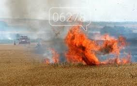 Огонь опять распространяется по полям!, фото-1