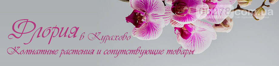 Скидки -15% на некоторые растения, Цветочный магазин Флория