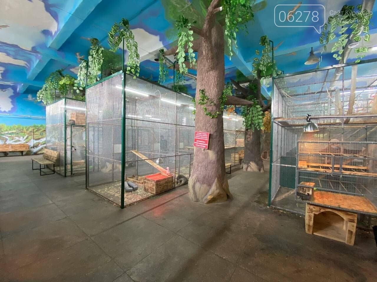 Зоопарк в Белицком, Сайт Курахово